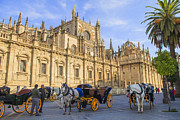 Patricia Hofmeester - Horse drawn carriages in Seville