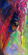 Vibrant Drawings Framed Prints - Horse eye portrait  Framed Print by Svetlana Novikova