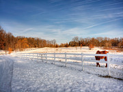 Grazing Snow Metal Prints - Horse Farm Metal Print by Jenny Ellen Photography