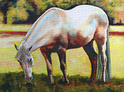 White Horse Prints - Horse Grazing In The Shade Print by Carol Jo Smidt