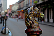 Jason Neely Acrylic Prints - Horse Head Hitching Post - Bourbon St. Acrylic Print by Jason Neely