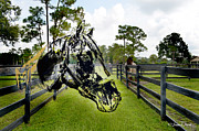 Horse Stable Posters - Horse Head over pasture Poster by Susan Marsh