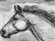 Farm Animals Pastels Prints - Horse Head Study Print by Elizabeth Coats