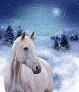 Snowy Night Night Posters - Horse in Winter Poster by Kenny Francis