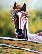 Jyoti Vats - Horse