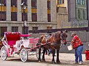 Old Montreal Digital Art - Horse Needs Water in Old Montreal-QC by Ruth Hager