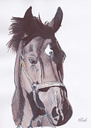 Water Colour Drawings - Horse of course by Amanda Mitchell