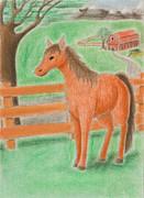 Jeanette K - Horse on Farm