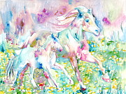 Foal Framed Prints - Horse Painting.17 Framed Print by Fabrizio Cassetta
