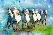 White Horses Posters - Horse Paintings 006 Poster by Catf