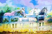 Water Sports Art Print Paintings - Horse Paintings 008 by Catf