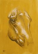 Horse Portrait Print by Cindy Elsharouni