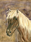 Melly Terpening Paintings - Horse Portrait Study by Melly Terpening