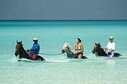 Bahamas Photos - Horse Riders in the Surf by David Smith