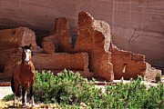 Quarter Horse Framed Prints - Horse Ruins in Canyon de Chelly Framed Print by Julie Magers Soulen