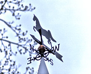 Rural Scenes Digital Art - Horse Weather Vane by Bill Cannon