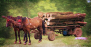Log Digital Art - Horsepower by Jeff Kolker