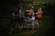 Animal Sport Prints - Horsepower part III Print by Erik Brede