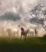 Nina Bradica Framed Prints - Horses in the Mist Framed Print by Nina Bradica