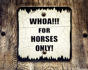 Grapevine Photos - Horses Only Sign Picture by Lisa Russo