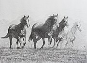 Wild Horses Drawings Originals - Horses Running by Hung Quach