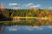 Fall Colors Autumn Colors Pyrography Posters - Horseshoe Pond Poster by Daniel Behm