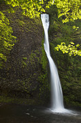 Water Flowing Posters - Horsetail Falls Poster by Andrew Soundarajan