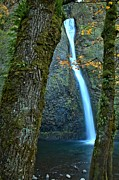 Bridal Veil Falls Posters - Horsetail Falls At Columbia River Gorge Poster by Adam Jewell