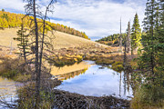 Clouds Photographs Posters - Horsethief Creek Beaver Pond - Cripple Creek Colorado Poster by Brian Harig