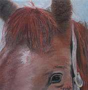 Bit Originals - Horsin Round a Bit by Claudia Goodell