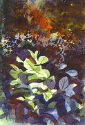 Water Colour Painting Originals - Hostas in the Forest by Kip DeVore