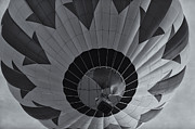 Hot Air Balloon Prints - Hot Air Balloon Ascent II Print by Clarence Holmes