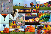 Coller Posters - Hot Air Balloon Collage Rectangle Poster by Thomas Woolworth