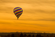 Hot Air Balloon Framed Prints - Hot Air Balloon in The Golden Sky Framed Print by James Bo Insogna
