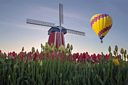 JPLDesigns - Hot Air Balloon Over...