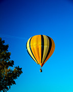 Hot Air Balloon Prints - Hot Air Balloon Print by Robert Bales
