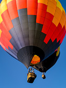 Colorful Sky Posters - Hot Air Ballooning Poster by Edward Fielding