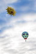 Brenda Giasson - Hot Air Balloons in Flight