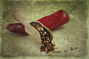Chili Prints - Hot Chilli Print by Erik Brede
