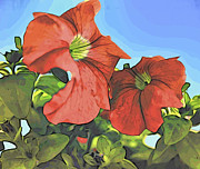 Baptism Gift Posters - Hot Flame Hibiscus Poster by Eleni Mac Synodinos