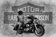 Enjoying Mixed Media Framed Prints - Hot Harley Bw Framed Print by Todd and candice Dailey