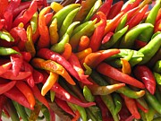 Hot Peppers Prints - Hot Peppers Print by Marianne Werner