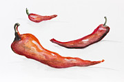 Hot Peppers Posters - Hot perspective Poster by Irina Gromovaja