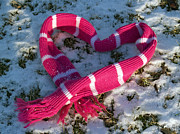 Twosome Prints - Hot Pink Love in Snow Print by Anna Lisa Yoder