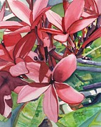 Plumeria Paintings - Hot Pink Plumeria by Marionette Taboniar