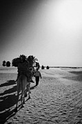 Camel Photo Prints - hot sun beating down on tourists taking a camel ride into the sahara desert at Douz Tunisia Print by Joe Fox