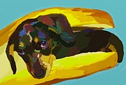 Dachshund Paintings - Hotdog by Patti Siehien