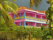 Hotel Jamaica Print by Linda Bianic