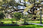 Kathleen K Parker - Houmas House Plantation in Louisiana