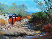Tucson Originals - House Along The Wash by M Diane Bonaparte